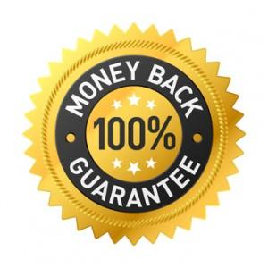Blutxt SEO Money Back Guarantee
